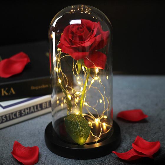Preservación de una rosa eterna