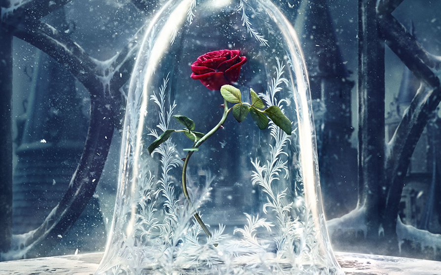 Rosa Eterna de la Bella y la Bestia