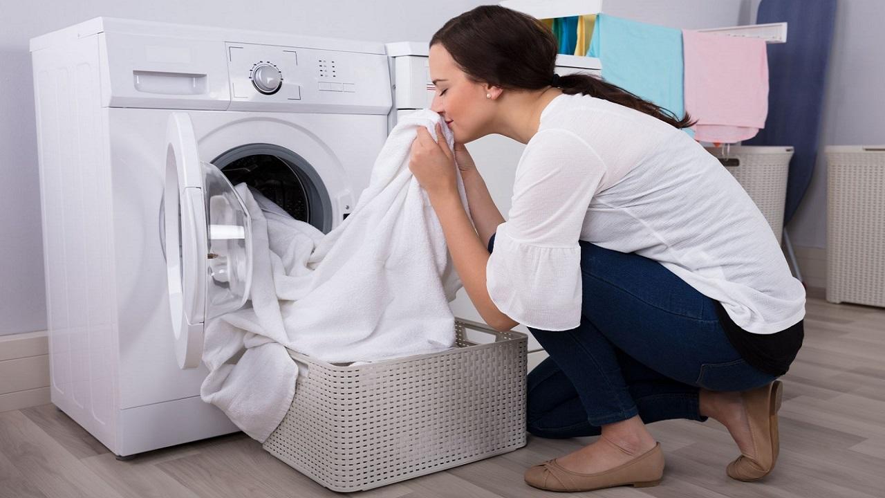 secadora con bomba de calor 2