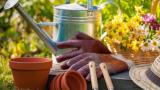¿Cuáles son las herramientas para jardín que debes comprar?